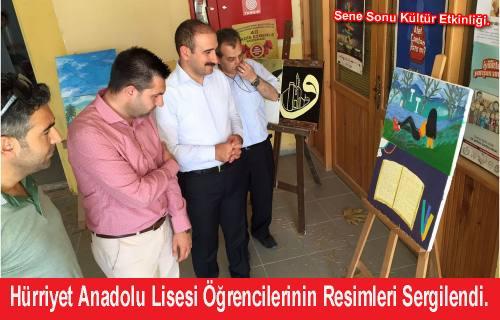 Hürriyet Anadolu Lisesi Öğrencilerinin Resimleri Sergilendi.