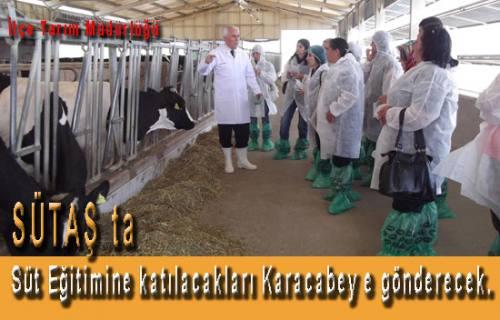 İlçe Tarım Müdürlüğü süt üreticilerini Sütaş da eğitime gönderecek.