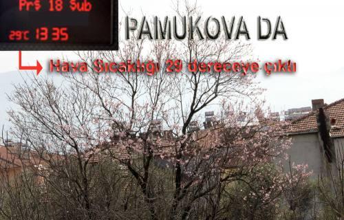 Pamukova da bugün termometreler 29 dereceyi gördü.