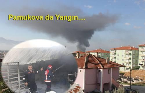 Pamukova da yangın korkuttu.