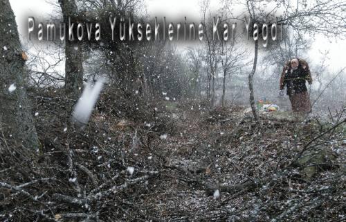 Pamukova'nın yüksek kesimlerine kar yağdı.