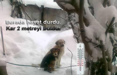 Pamukova'nın Yükseklerinde Kar 2 metreye Ulaştı