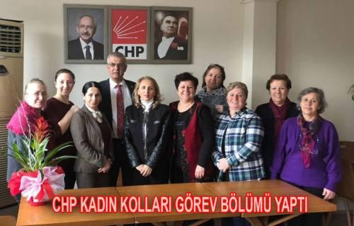 Sakarya CHP Kadın kolları Görev Bölümü Yaptı.