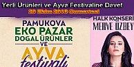 20 Ekimde İkincisi Yapılacak Pamukova Festivali hazırlıkları başladı.