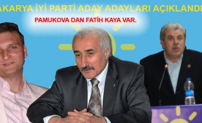 Sakarya da İyi Parti Milletvekili Aday Adayları Açılandı.
