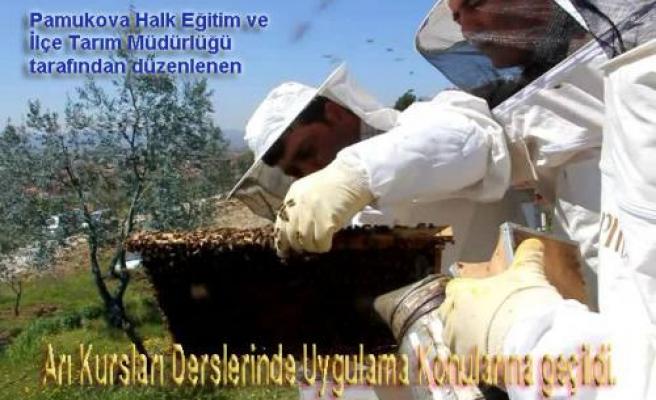 Pamukova Arı Yetiştirici Kursiyerleri Uygulamalı derslere geçtiler.