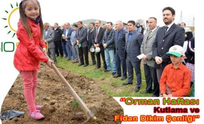 Pamukova da Biosun Destekli ' Kağıttan Fidana Dönüş ' Projesi hayata geçti.