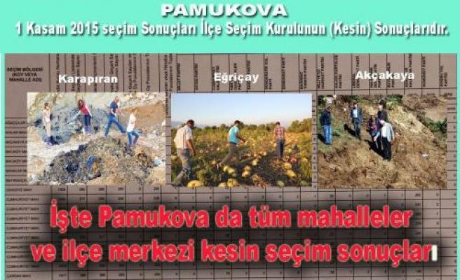 Pamukova da seçim sonuçları mahalle mahalle açıklandı.
