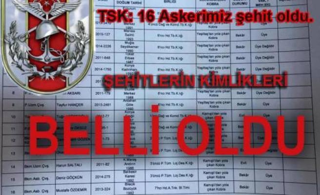TSK'dan Dağlıca açıklaması: 16 şehit