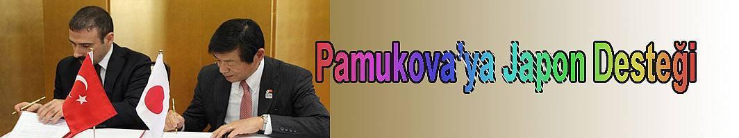 Pamukova'ya Japon Desteği