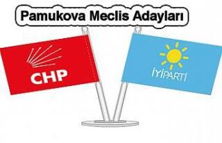 Pamukova CHP ve İYİ Parti Meclis Üyelikleri açıklandı.