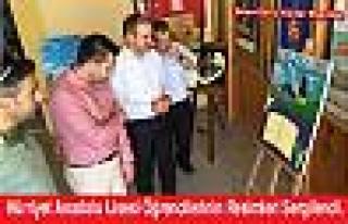 Hürriyet Anadolu Lisesi Öğrencilerinin Resimleri...