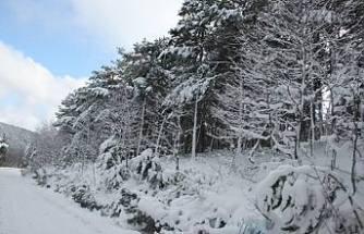 Kış Geri geldi.