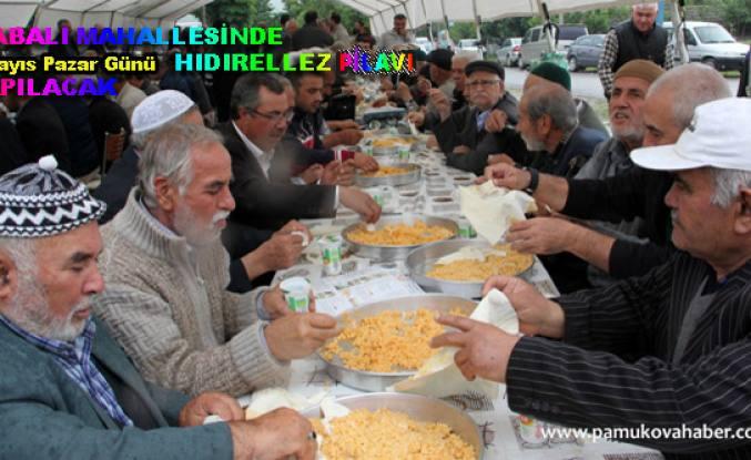 Pamukova'da geleneksel hıdırellez pilavı 6 Mayıs da İsabalı da başlıyor.