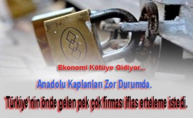 Milli Gazete; 'Türkiye'nin önde gelen pek çok firması iflas erteleme istedi.'